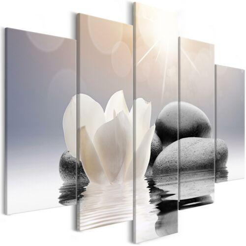 ZEN SPA STEINE BLUME WASSER Wandbilder xxl Bilder Vlies Leinwand b-B-0267-b-m