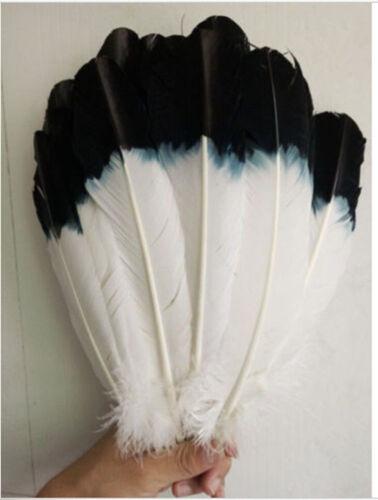 Wholesale 10-1000 PCS 10-12inches//25-30cm Turkey Feathers Black+White