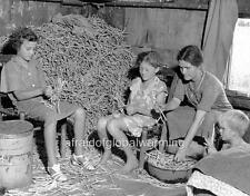Photo. ca 1936. Woman & Children Shelling Peas