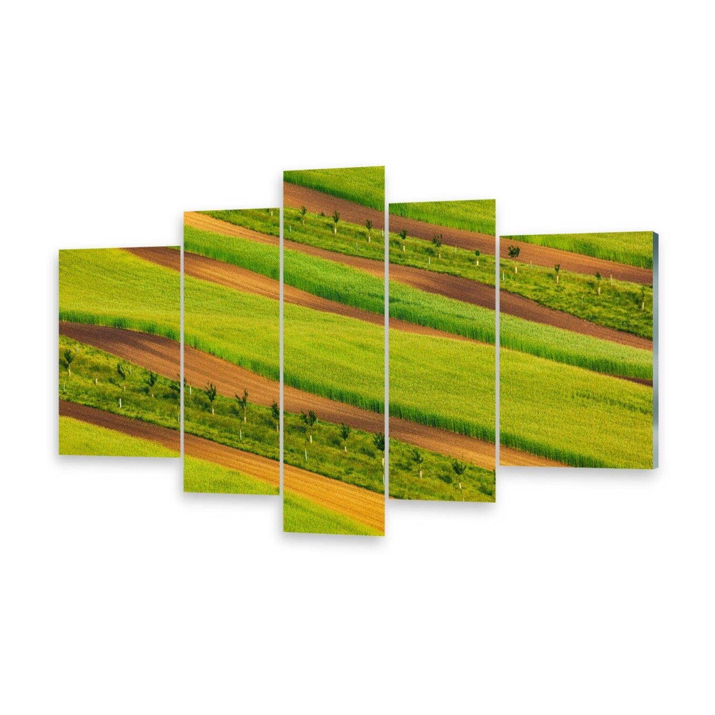 Mehrteilige Bilder Glasbilder Wandbild Gestreifte Felder