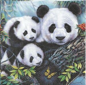 Set-di-4-Tovaglioli-in-Carta-Mamma-Panda-Decoupage-Collage-Decopatch