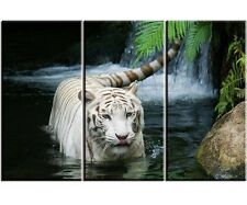 White Tiger in Lake Canvas Print Painting 3 Panels Framed HD Wall Art Home Decor