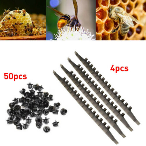 50Pcs Beekeeping Queen Rearing  Base Mount Cell Cups w// Bee Frame Cell Bar Strip