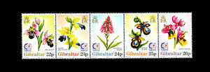 Orchids-strip-of-5-mnh-stamps-1995-Gibraltar-685-flowers