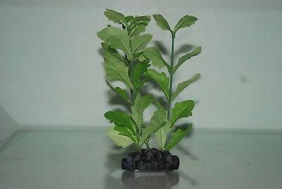 Planta De Acuario shinnsia rivularis Seda Verde 13 cm con base ponderada