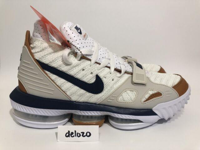 Nike Lebron XVI 16 Trainer Medicine