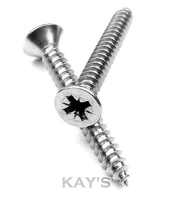 No.6 x 19mm Stainless Steel Countersunk Self Tapping Screws 20 Pk.