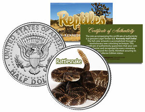 RATTLESNAKE-Collectible-Reptiles-JFK-Kennedy-Half-Dollar-U-S-Colorized-Coin