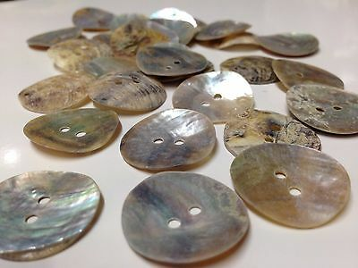 10mm 80-1900g Vintage Neutrals Mother of Pearls shells Buttons Sewing Knittings
