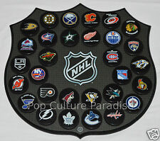 """HOCKEY PUCKS ALL 30 NHL TEAMS Complete Set """"Basic"""" WITH WALL MOUNT PLAQUE BOARD"""