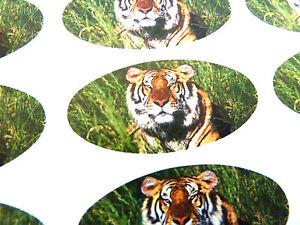 Tigre-Ovalado-Junta-Etiquetas-Pegatinas-Papel-Regalo-Sobres-Bolsas-Tarjetas