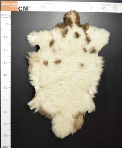 Gran selección natural cordero oveja fell de Transilvania naturaleza fell #lhu