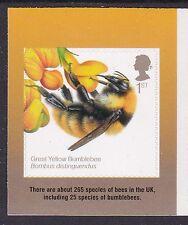 SG? - 1st Bumblebee SA EX API RB-rilasciato il 18 AGOSTO'15-Gomma integra, non linguellato
