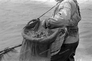 Atlantik-Kuste-Frankreich-France-1943-Normandie-Pecheurs-de-Crevettes-7