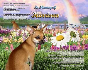 Chihuahua Memorial Picture-Rainbow Bridge Poem Personalized w/Pet's Name - Gift