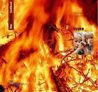 """Das kreative Sachbuch """"Feuer"""" von Sabine Latorre und Annerose Naber (2004, Taschenbuch)"""