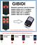 GIBIDI GIBIDI OPEN OUT 2 4 Remote Control Duplicator 4-Channel 433.92 MHz.