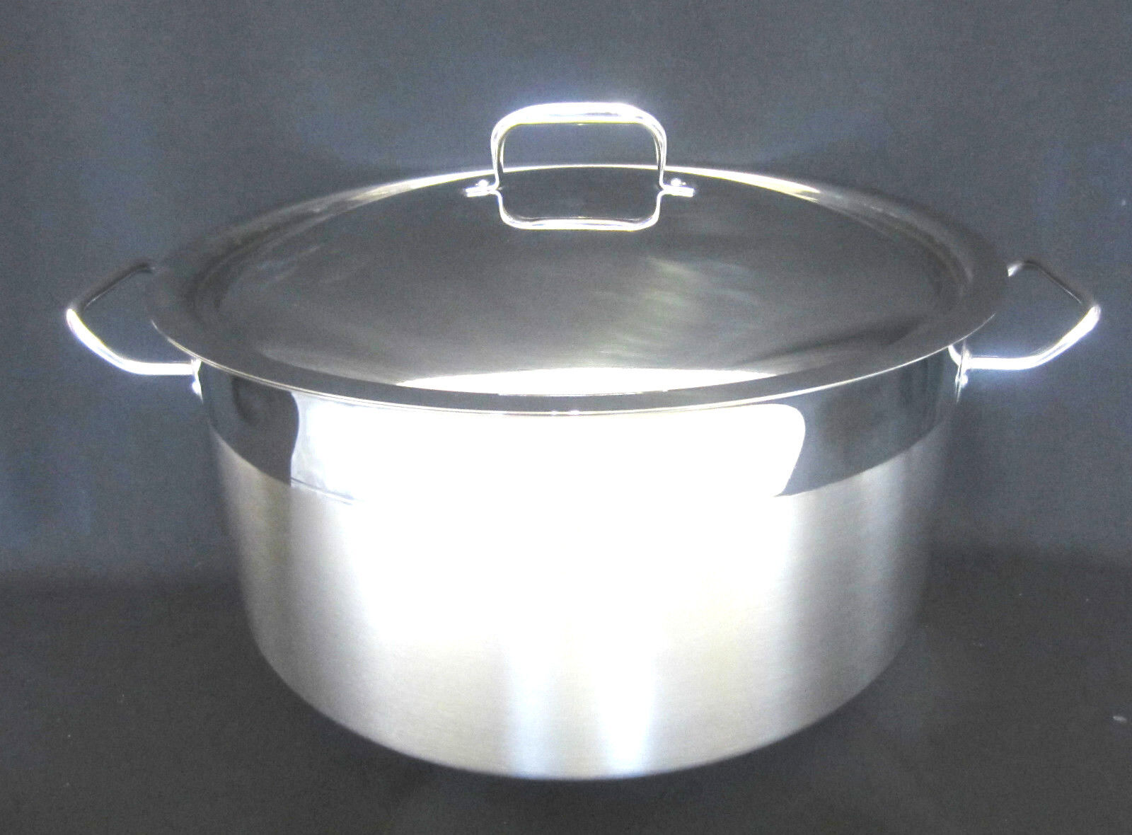 Stainless Professional Cateriing Cookware Steel Shallow Casserole Large Pans
