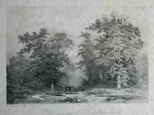 Lito Georges Muller Bosque De Fontainebleau Thierry Monitor De Arts 1846
