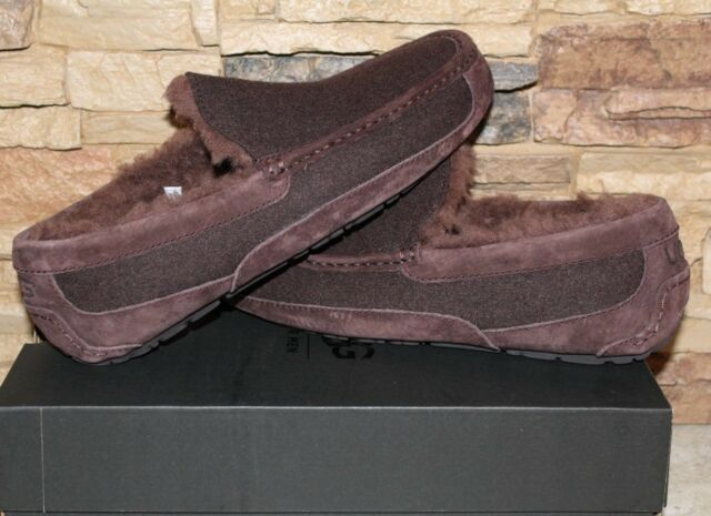 NIB UGG Men's ASCOT Wool UGGPure Lined Slip On Moccasin Slippers STOUT 12