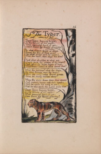 The Tyger Vintage Fine Art Print William Blake