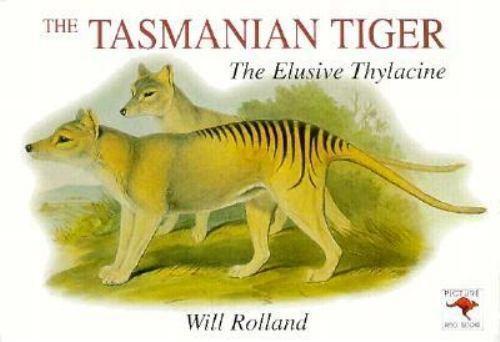 Tasmanian Tiger : The Elusive Thylacine by Will Rolland