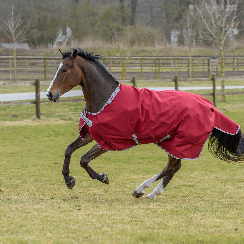 Bucas Irish Turnout Extra 300g -Ruby -Turnout Rug