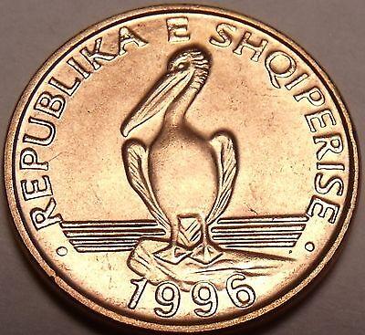 Gem Choice Unc Albania 1996 1 Lek~Brown Pelican Coin~See Our Coins~Free Shipping