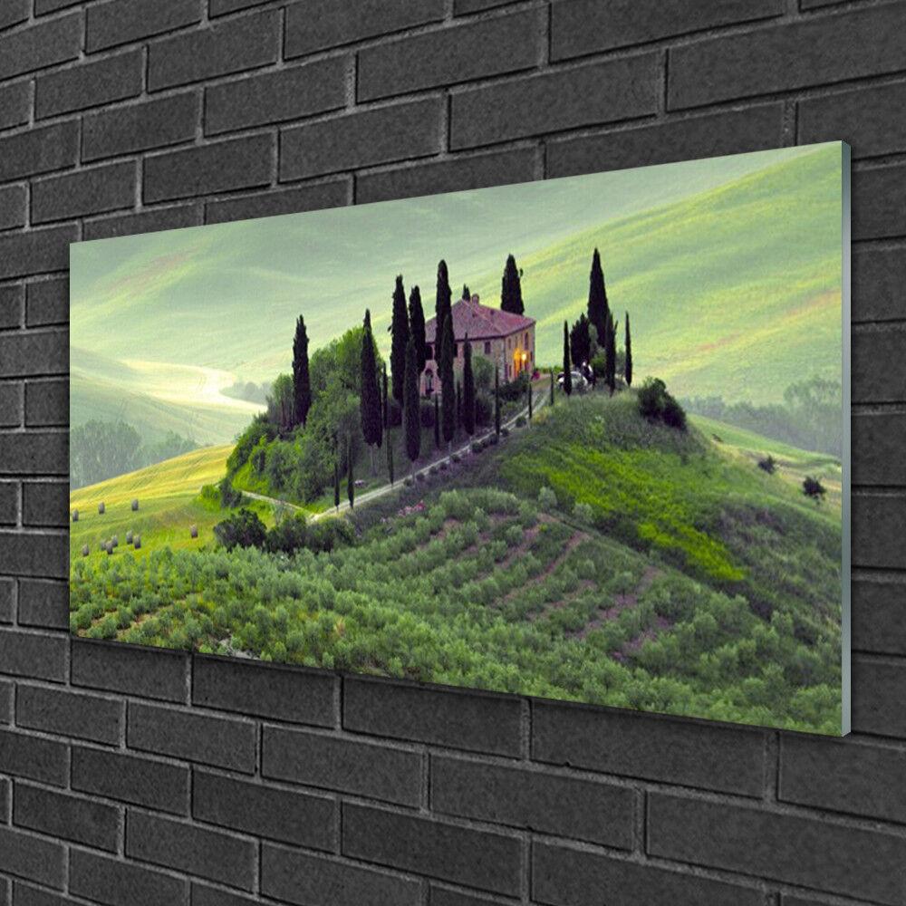 Tableau sur verre Image Impression 100x50 Nature Arbres Prairie