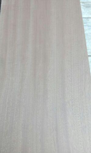 Mahagoni Body Nr 5 Korpus One piece 500+x 350 x 62 mm Top Qualität
