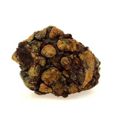202.6 Ct Practical Pallasite Meteorite Kenya Distinctive For Its Traditional Properties Sericho