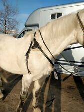 Gallop Leather Adj Horse Pony Breastplate with Running Martingale Schooling Aid