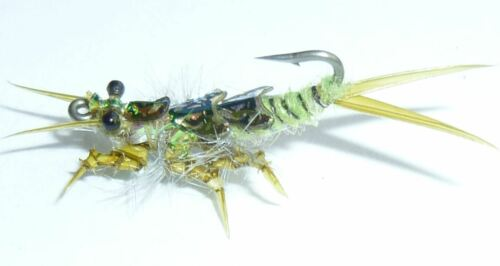 #12,14 Golden Olive Special 24 Artflies Realistic Stonefly Salmonfly Nymph