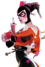 Magnetic Decal For Car Harley Quinn Joker Suicide Squad Magnet 3 5