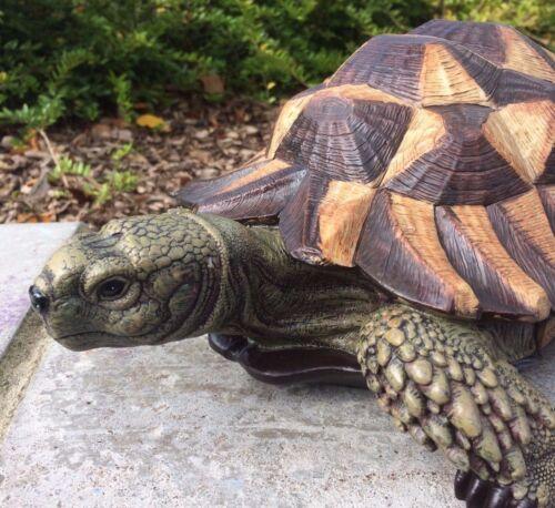 Tartaruga Vivid Arts Interni Esterni Decorazione Giardino £ 19.99
