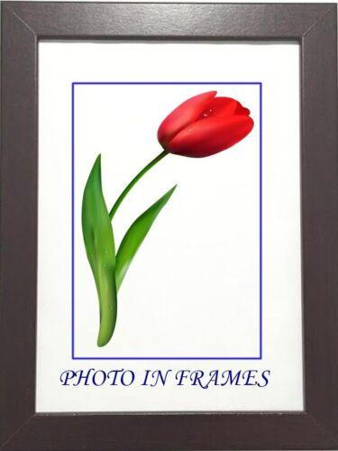 Poster Picture Photo Frames  Black White Silver Light Oak Oak Various Sizes