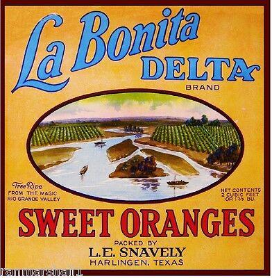 Harlingen Texas Rio Grande Orange Citrus Fruit Crate Label Art Print