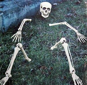 Skelettteile-fuer-Rasen-Dekoration-Skelett-Teile-Knochen-amp-Totenschaedel-Deko