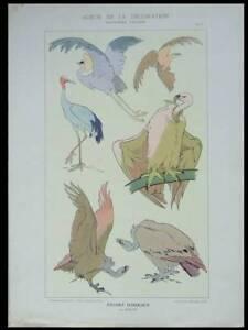 VOGEL-JUGENDSTIL-1901-LITHOGRAPHIE-ART-NOUVEAU-ROLPH