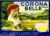 Corona Riverside County Corona Belle Lemon Citrus Fruit Crate Label Art Print
