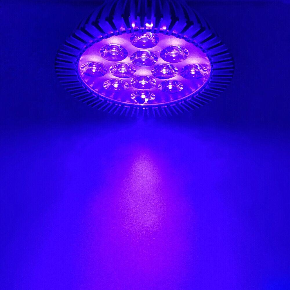 15W 21W PAR30 UV 365nm~395nm~420nm~440nm Purple LED Lamp Spot Light Bulb Curing