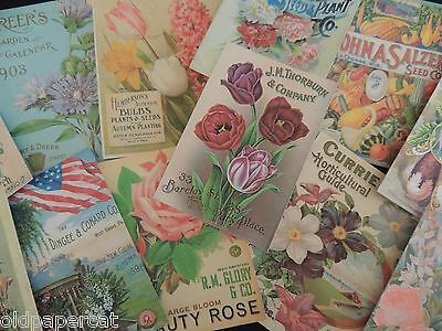 Lot of 12 VINTAGE Garden Seed & Catalog DIE CUTS for CRAFTS | FREE SHIP | S21