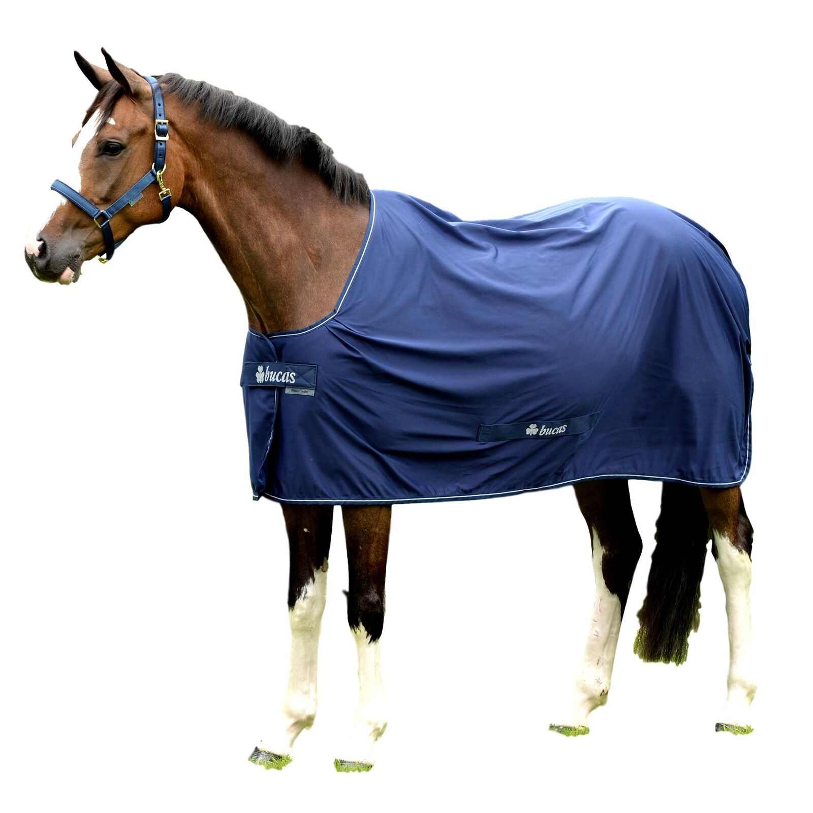 Bucas Shamrock energia Cooler Sheet with Two Layers of StayDry Fabric