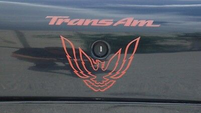 pontiac trans am firebird lettering kit other colors available