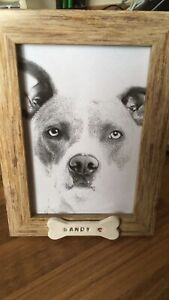 Chat Ou Chien Cadre Photo Avec Personnalisé Pet Name Plaque Memorial Perte De Mémoire-afficher Le Titre D'origine