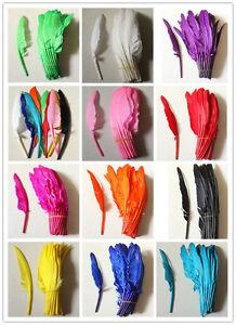 Wholesale10-100PCS 25-30cm/10-12inches hard rod Goose feather 12color PICK