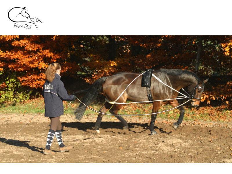 Busse sistema de entrenamiento Ayuda Pessoa para estocada trabajo Caballo Pony Entrega Gratis