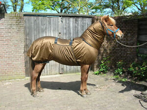 Image Is Loading Sweet Itch New Fly Rug By Pagony Also