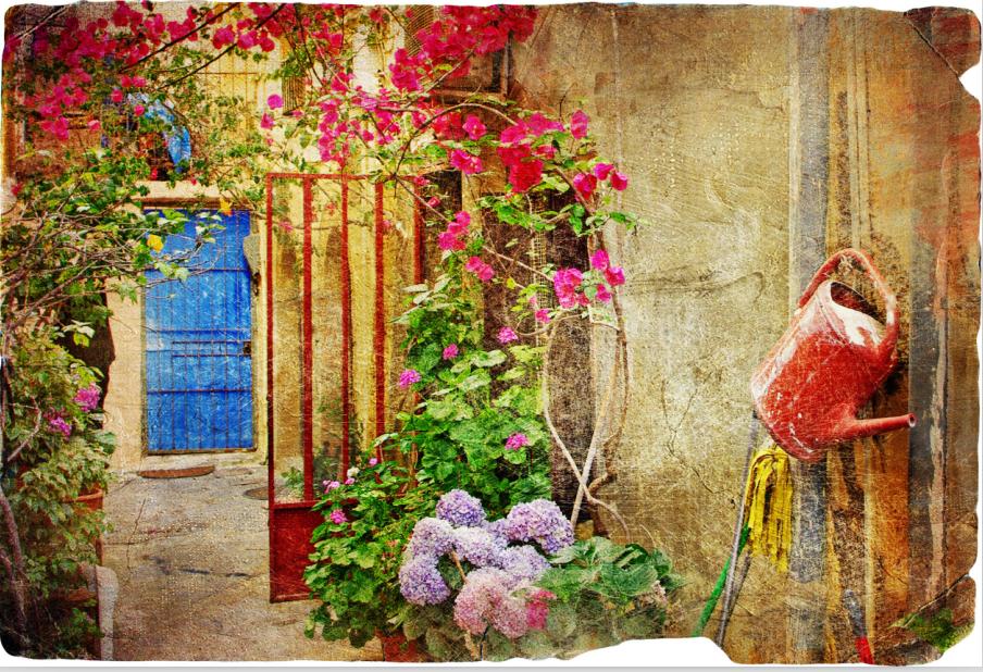 3D Alte Blaumenrebenfotos 82 Tapete Wandgemälde Wandgemälde Wandgemälde Tapete Tapeten Bild Familie DE | Ausgezeichnet (in) Qualität  | Kaufen Sie beruhigt und glücklich spielen  |  2e9cbd
