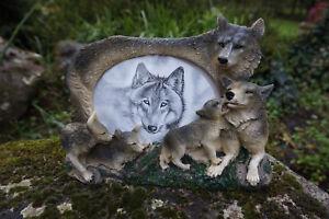 Mo0250 Figurine Statuette Famille Cadre Loup Louve Animal Sauvage 6g3daihk-07224822-153213987